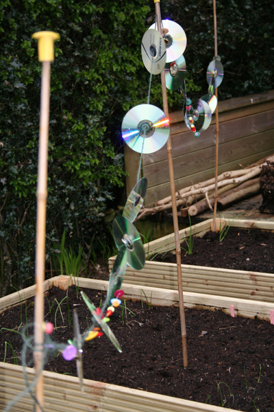 Cd Bird Scarer To Protect My Vegetables Driftwood Dreaming